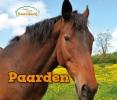<b>Kathryn  Clay</b>,Paarden