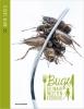 David  Creëlle ,Bugs, culinair insectenkookboek