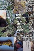 Hillman, Brenda Extra Hidden Life, Among the Days