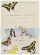 Abrams Butterflies of Titian Ramsay Peale Journal