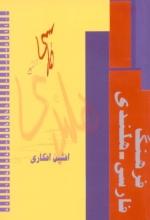 Afshin  Afkari Perzisch-Nederlands woordenboek