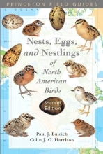 Paul J. Baicich,   C.J.O. Harrison A Guide to the Nests, Eggs, and Nestlings of North American Birds
