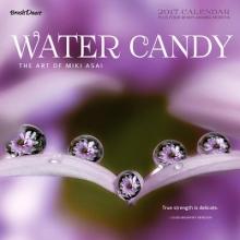 Water Candy 2017 Wall Calendar