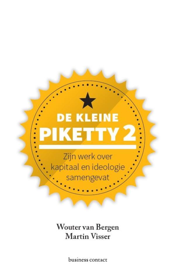 Wouter van Bergen, Martin Visser,De kleine Piketty 2