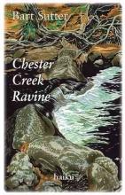 Sutter, Bart Chester Creek Ravine