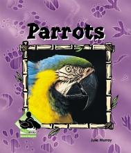 Murray, Julie Parrots