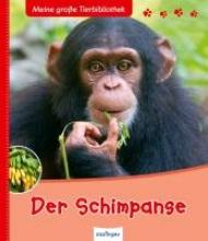 Frattini, Stéphane Der Schimpanse