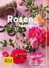 Kluth, Silke Rosen pflegen
