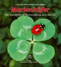 Fischer-Nagel, Heiderose Marienkäfer