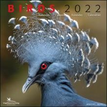 , Birds maandkalender 2022, Vogelbescherming