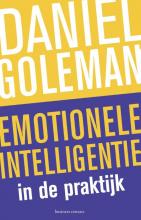 Daniël Goleman , Emotionele intelligentie in de praktijk