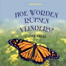 Darice  Bailer Hoe worden rupsen vlinders
