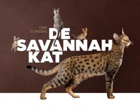 Cindy Schwering , De Savannah kat