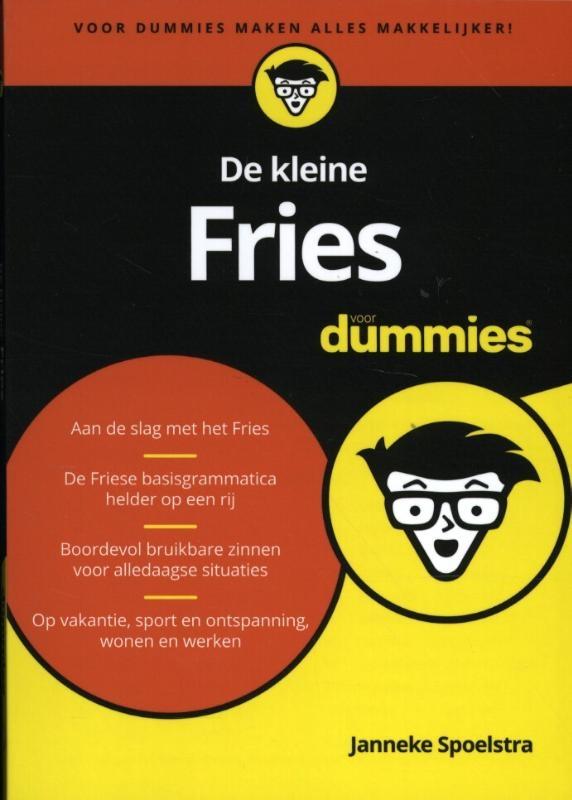 Janneke Spoelstra,De kleine Fries voor dummies