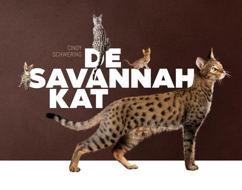 Cindy Schwering,De Savannah kat