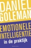 <b>Daniel  Goleman</b>,Emotionele intelligentie in de praktijk