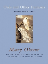 Oliver, Mary Owls And Other Fantasies