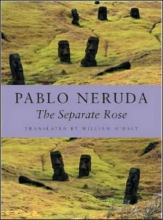 Neruda, Pablo,   O`Daly, William The Separate Rose