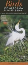 Homel, Greg R. Birds of Alabama and Mississippi
