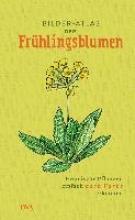 Bilder-Atlas der Frühlingsblumen