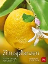 Klock, Monika Zitruspflanzen