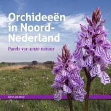 Hans  Dekker Orchideeën in Noord-Nederland