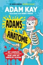 Adam Kay , Adams anatomie