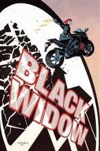 Mark Waid Black Widow Vol. 1: S.h.i.e.l.d.`s Most Wanted