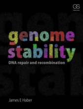 James Haber Genome Stability