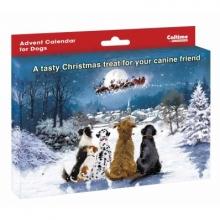 , Adventskalender voor honden