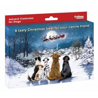 ,Adventskalender voor honden