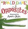 Dahl Roald, Roald Dahl's Opposites