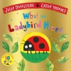 <b>Donaldson Julia</b>,What the Ladybird Heard (10th Anniversary Edition)