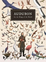 Grolleau, Fabien Audubon, on the Wings of the World [graphic Novel]