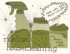 Briggs, Raleigh Nontoxic Housecleaning