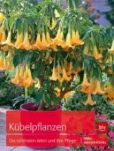 Sansoni-Köchel, Maria Kübelpflanzen