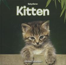 Michael  Teitelbaum Kitten