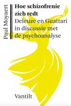 Paul Moyaert , Hoe schizofrenie zich redt
