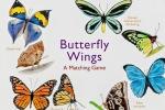,Butterfly Wings
