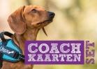 ,Coachkaartenset
