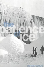 Renate Wood The Patience of Ice