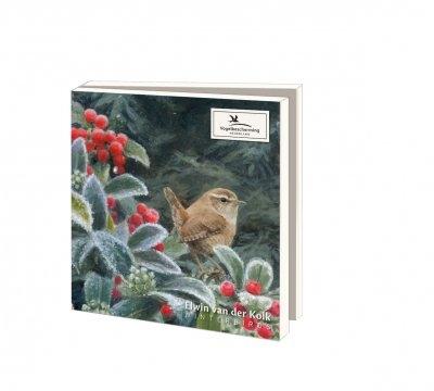 Wmc1004,Kerstkaart mapje 10 stuks met env elwin van der kolk wintervogels