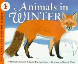 Bancroft, Henrietta Animals in Winter
