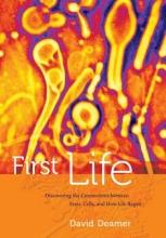 David Deamer First Life