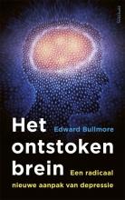 Edward Bullmore , Het ontstoken brein