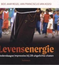 Kenny Brack , Levensenergie. 800 jaar Regel van Franciscus