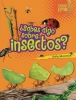 Silverman, Buffy,¿Sabes algo sobre insectos?/ Do You Know about Insects?