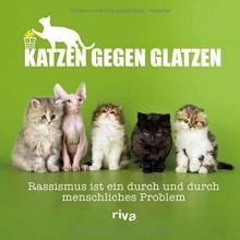 Katzenstein, Paul von Katzen gegen Glatzen