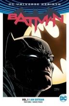 David,Finch/ King,,Tom Batman Hc01. Ik Ben Gotham (herboren)