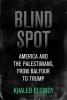 Elgindy, Khaled, Blind Spot